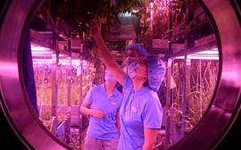 Китайские добровольцы провели на искусственной лунной базе 200 дней