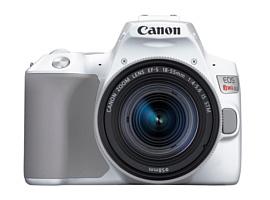 Canon выпустила новую недорогую зеркальную камеру EOS Rebel SL3