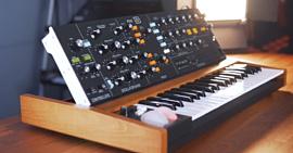 Behringer Poly D — четыре клона Moog в одном синтезаторе