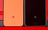 Слух: Google выпустит только XL-версию Pixel 5