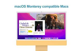 Apple назвала список Mac, которые можно будет обновить до macOS Monterey