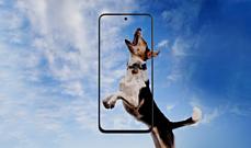 Samsung анонсировала недорогой смартфон Galaxy M31s