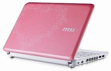 Новый романтичный мини ноутбук  - MSI Wind U100 Valentine Edition