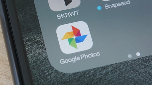Google Photos научили распознавать лица домашних животных