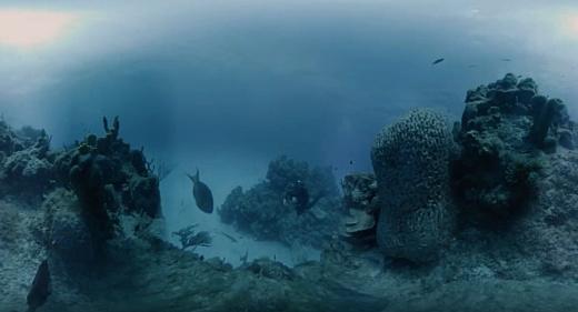 Hydrus VR — 8К-камера для 360-градусной подводной съемки