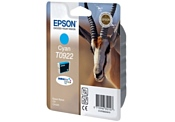 Epson C13T09224A10