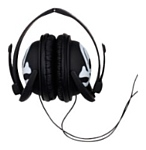 DCI (Decor Craft Inc.) Skull headphones