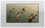 AquaView 42 Smart TV