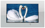 AquaView 17 Smart TV
