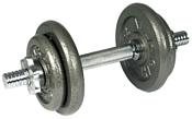 American Fitness Hammertone 25 кг