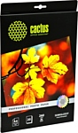 CACTUS Полуглянцевая A4 260 г/кв.м. 20 листов (CS-SGA426020)