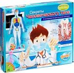 Bondibon Секреты человеческого тела (ВВ0927)