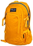 POLAR П2171 (желтый)