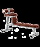 Bronze Gym J-035