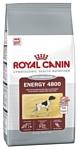 Royal Canin Energy 4800 (20 кг)