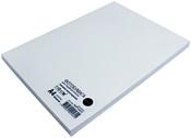 NetProduct глянцевая A4 110 г/м2 100 листов