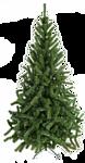 Green Trees Лесная сказка 1.5 м