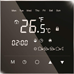 IQWatt IQ Thermostat Black Diamond