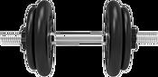 Central Sport N3 32 кг