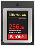 SanDisk SDCFE-256G-GN4NN