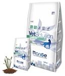 Monge VetSolution Diabetic для кошек