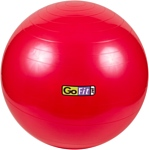 Go Fit Stability Ball 55 см