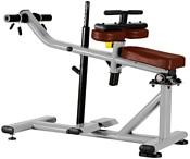 Bronze Gym J-029