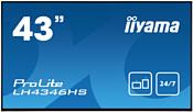 Iiyama ProLite LH4346HS-B1