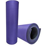 Isolon Sport 10 (фиолетовый/черный)