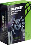Dr.Web Server Security Suite (1 ПК, 1 год) LBS-AK-12M-1-A3