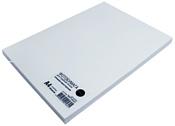 NetProduct глянцевая А4 160 г/м2 100 листов