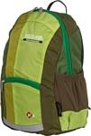 POLAR П2009 (зеленый)