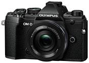 Olympus OM-D E-M5 Mark III Kit