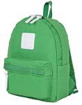 POLAR 17203 6.9 зеленый
