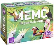 Нескучные игры Мемо - Пернатый мир