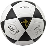 Atemi Goal (5 размер)