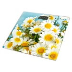 Home Element HE-SC906 Camomile Field