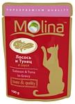 Molina Пауч для кошек Лосось и тунец в соусе (0.1 кг) 24 шт.