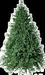 Green Trees Монтерей люкс 2.4 м