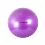 Body Form BF-GB01 65 см (фиолетовый)