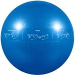 Go Fit GF-55PRO (голубой, 55 см)