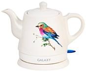 Galaxy GL0501