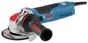 BOSCH GWX 19-125 S Professional (06017C8002)