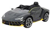 Chi Lok Bo Lamborghini Centenario (серый)
