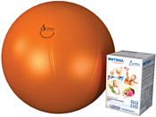 Альпина Пласт Фитбол Стандарт 55 см (оранжевый)