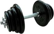 American Fitness гантель обрезиненная 20 кг