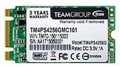 Team Group TM4PS4 256GB