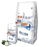 Monge (1.5 кг) VetSolution Renal для кошек