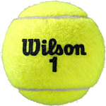 Wilson Roland Garros All Court WRT116400 (4 шт)