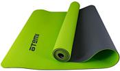 Atemi AYM0321 (зеленый)